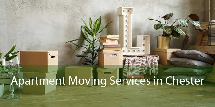Apartment Moving Services in Chester