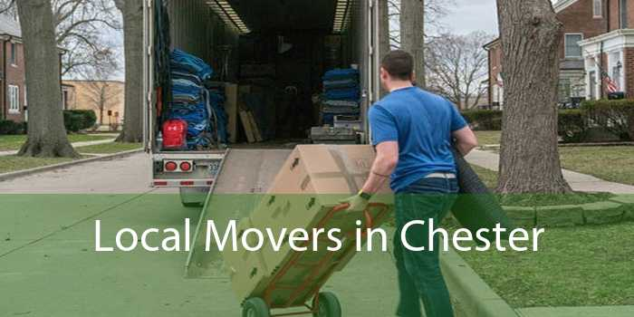 Local Movers in Chester